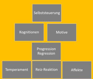 Die 7 Ebenen der Persönlichkeit in der PSI Theorie