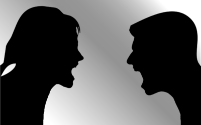 Wie werde ich zum Konfliktmeister – Deeskalation